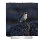 Kingfisher On The Rocks Shower Curtain