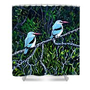 Woodland Kingfisher Shower Curtain