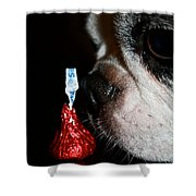 Kiss Me Cute Shower Curtain
