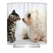 Kitten & Pup Confrontation Shower Curtain