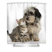 Kitten And Daxie-doodle Puppy Shower Curtain