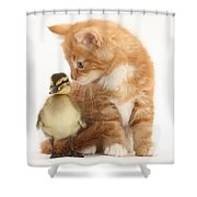 Kitten And Duckling Shower Curtain