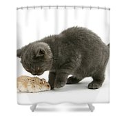 Kitten And Hamster Shower Curtain