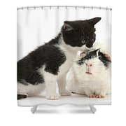 Kitten With Guinea Pig Shower Curtain
