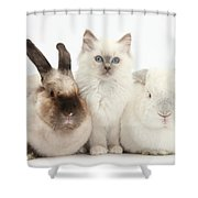 Kitten With Rabbits Shower Curtain