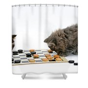 Kittens Playing Checkers Shower Curtain