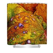 Knobbly Squash Shower Curtain by Judi Bagwell