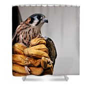 Krestrel Markings Shower Curtain