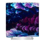 L. Histidine Crystals Shower Curtain by M. I. Walker