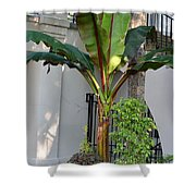 La Hacienda Shower Curtain
