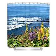La Jolla Coast Shower Curtain