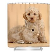 Labradoodle Puppy With Rabbit Shower Curtain