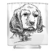 Labrador-portrait-drawing Shower Curtain