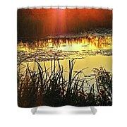Lacassine Sundown Shower Curtain
