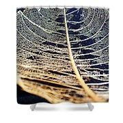 Lace Leaf 4 Shower Curtain