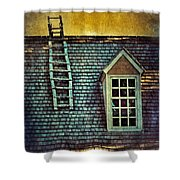 Ladder On Roof Shower Curtain