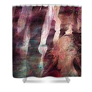 Lady Of The Mist Shower Curtain