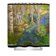 Lady Of The White Birch Shower Curtain