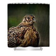 Lady Pheasant Shower Curtain