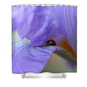 Ladybug On Iris Shower Curtain