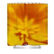 Ladybug On Poppy Flower Petal Shower Curtain