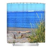 Lagoon 2 Shower Curtain