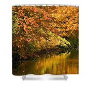 Lake And Forest In Autumn Shower Curtain