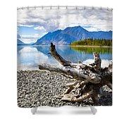 Lake Kathleen In Kluane National Park Shower Curtain