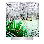 Lake Martin Swamp View Shower Curtain