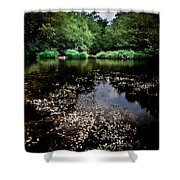 Lake Of Spirits Shower Curtain
