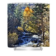 Lake Sabrina Creek Shower Curtain