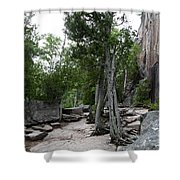 Lake Superior Provincial Park Shower Curtain