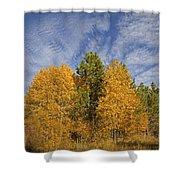 Lake Tahoe Aspen Sky Shower Curtain