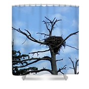 Lake Tahoe Eagle Nest Shower Curtain