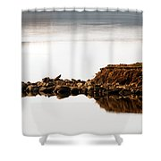 Lake Visitors Shower Curtain