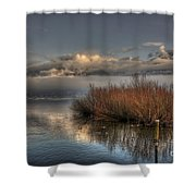Lake With Pampas Grass Shower Curtain