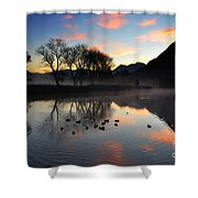 Lake With Trees And Ducks Shower Curtain