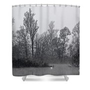 Lake With Trees Shower Curtain