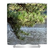 Lakeside Pines Shower Curtain