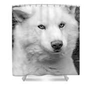 Lakota Shower Curtain