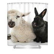 Lamb And Rabbit Shower Curtain