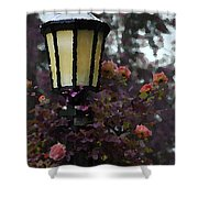 Lamp And Roses Shower Curtain