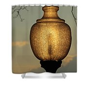 Lamp Light And Limb Shower Curtain