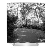 Lamps Of Central Park Shower Curtain
