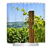 Landscape With Vineyard Shower Curtain by Elena Elisseeva
