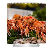 Langoustines At The Market Shower Curtain