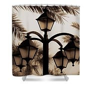 Lanterns And Fronds Shower Curtain