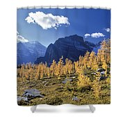Larch Trees From The Saddleback Trail Shower Curtain