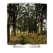 Larchill Arcadian Garden, County Shower Curtain