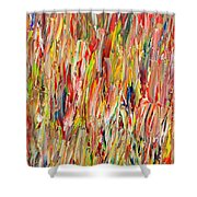 Large Acrylic Color Study 2012 Shower Curtain
